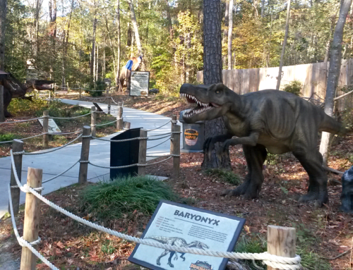 King's Dominion Dinosaurs Alive Attraction