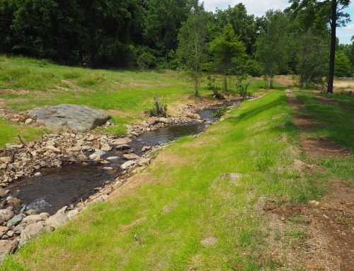 Bolton Branch Fish Passage & Stream Restoration